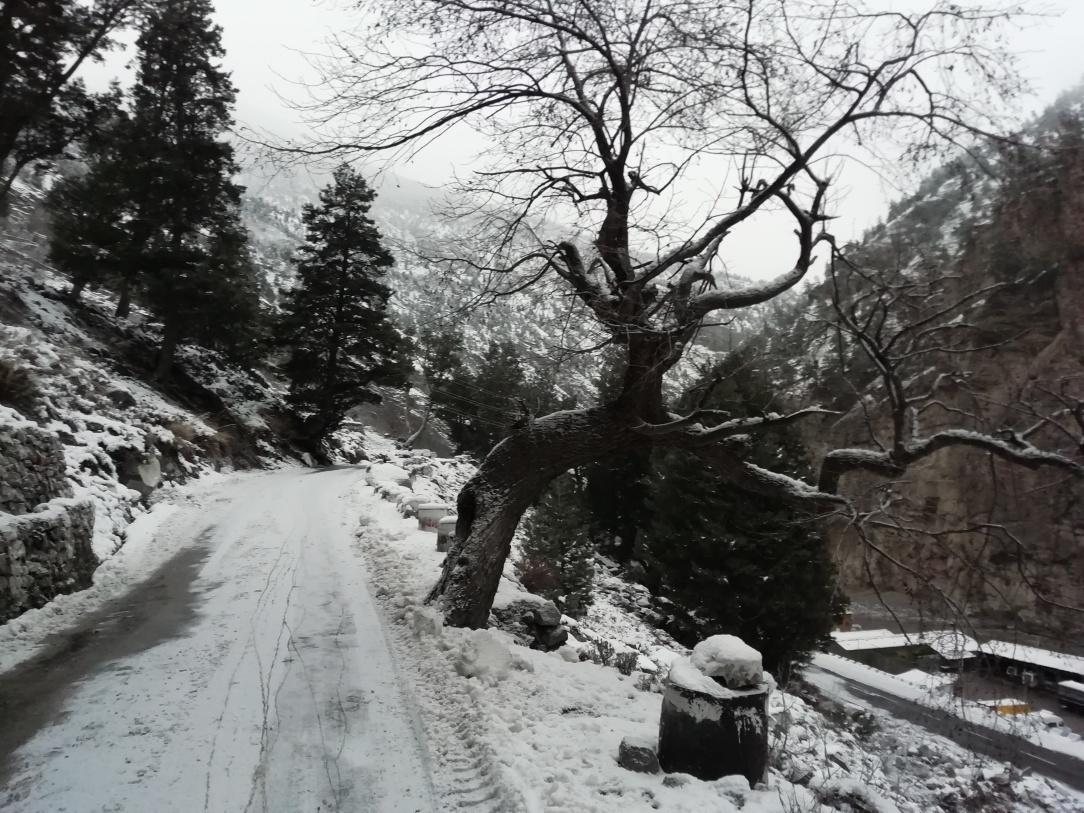 Quari Point , Kinnaur , Himachal Pradesh